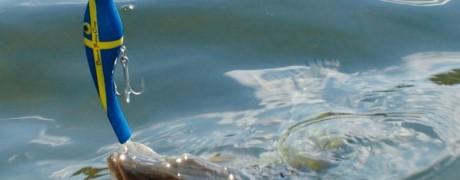 Schärengarten – Wir Fischer von Ingmarsö (2012/01, Fisch & Wasser)