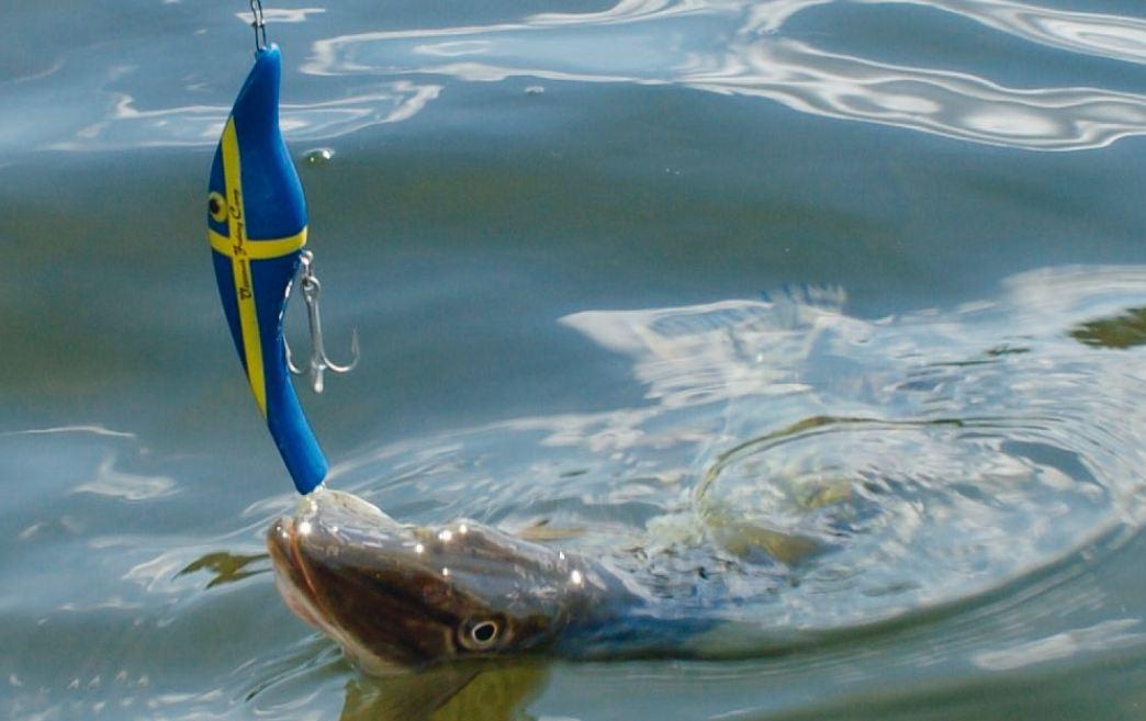 Hecht auf Schwedenzalt