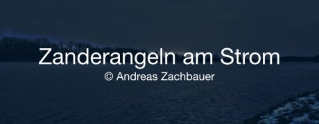 Zanderangeln am Strom (Fishing Festival 2015)
