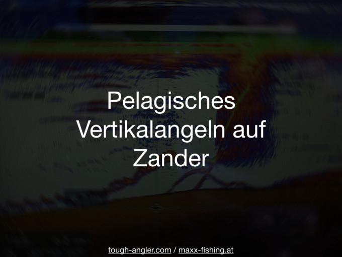 Pelagisches Vertikalangeln auf Zander (Fishing Festival 2017)