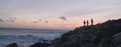 Portugal – Fado, Port & Barsch (2012/01, Fisch & Wasser)