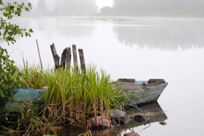 Mit Strategie und Planung auf zu neuen Ufern (2013/11, Fisch & Wasser)