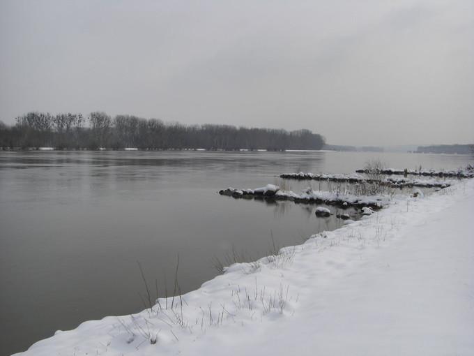 Danubische Stachelritter Teil 2 … der Winterzander braucht Geduld (2015/11, Fangfrisch)